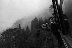 Toy Train, Darjeeling. India 2000